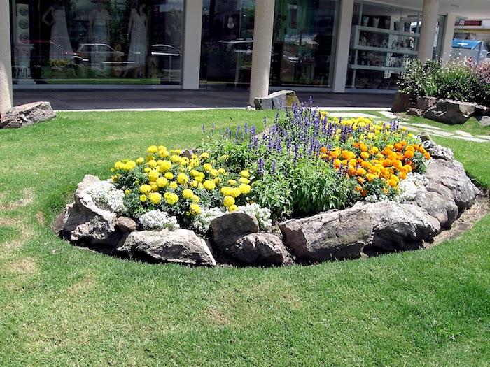 großer grüner rasen und ein kleiner steingarten mit grauen steinen, gelben, violetten und orangen blumen, einen steingarten anlegen