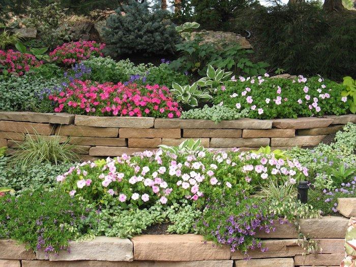 kleiner steingarten mit vielen kleinen violetten, blauen und pinken blumen und sukkulenten pflanzen, pflanzen für steingarten