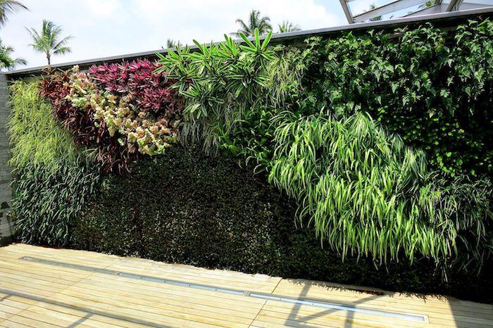 eine wand aus vielen grünen sichtschutz pflanzen, sichtschutz mit kletterpflanzen mit grünen blättern und ein boden aus holz, sichtschutz selber bauen ideen
