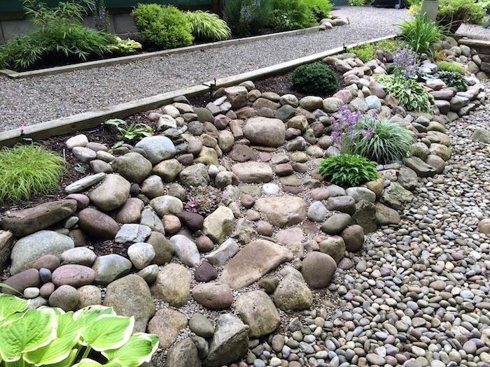 grauer gartenweg mit kleinen grauen steinen, einen gartenweg anlegen, graue und brauen kleine steine und violette blumen, sukkulenten im steingarten