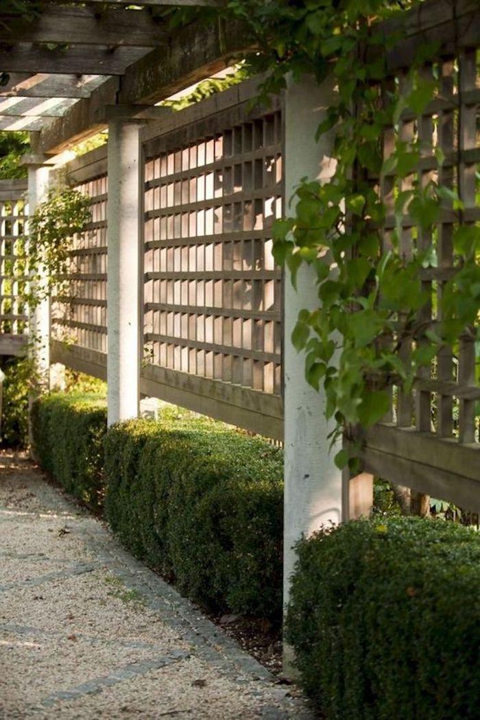 ien gartenweg im garten mit sichtschutz aus braunen rankgittern und kleinen grünen kletterpflanzen und einer grünen hecke, sichtschutz garten ideen
