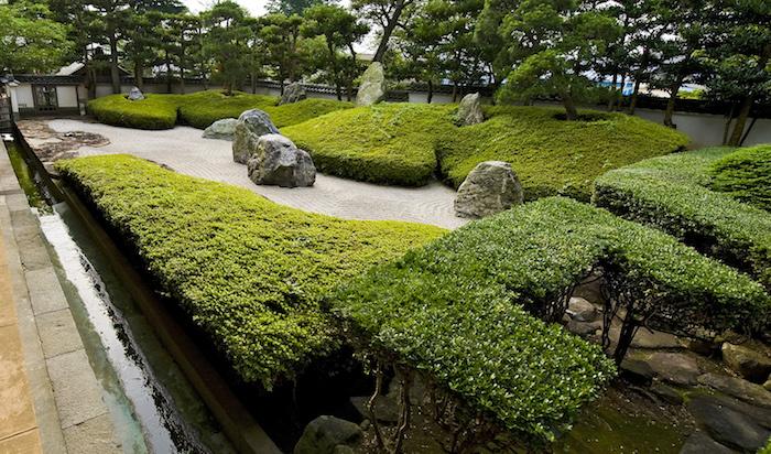garten gestalten mit grüner hecke und bäumen mit grünen blättern, ein boden und garten mit grauen steinen