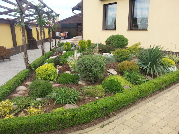 gelbes haus mit braunen fenstern und ein kleiner steingarten mit einer grünen hecke und steinen, gelben blumen und vielen grünen sukkulenten pflanzen, gartengestaltung bilder