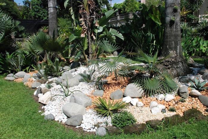 weiße und graue steine für steingarten, palmen mit grünen blättern in einem kleinen steingarten, bäume mit grünen blättern, einen steingarten anlegen diy anleitung