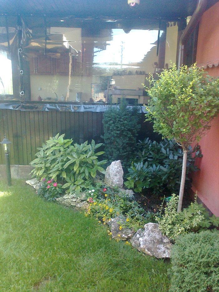 grüner rasen im kleinen mini steingarten mit violetten und gelben blumen und grünen pflanzen für steingarten, gartengestaltung bilder