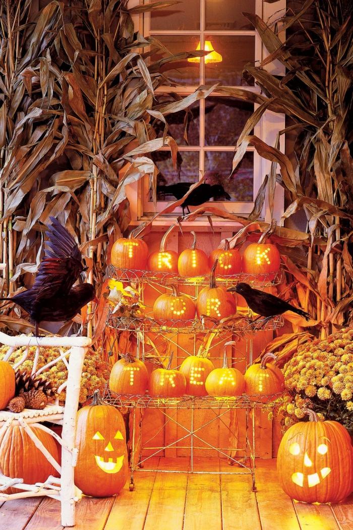 halloween deko für draußen, große maisblätter, gelbe blumen, kürbisse mit beleuchtung