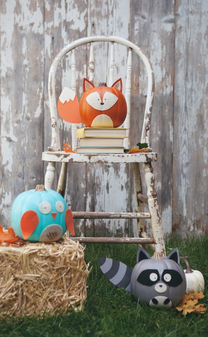 Lustige Bastelideen zu Halloween, Fuchs Uhu und Waschbär aus Kürbissen selber machen