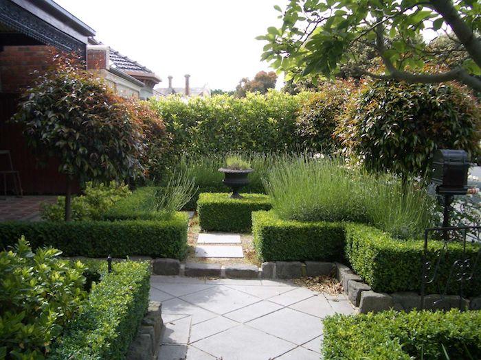 garten mit einer grüner hecke und gartenweg mit grauen fliesen und kleinen bäumen, v garten mit sichtschutz pflanzen