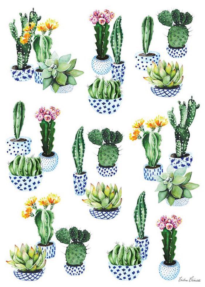 Kakteen mit gelben und rosafarbenen Blüten zeichnen, in bunten Blumentöpfen, schönes Bild zum Nachmalen