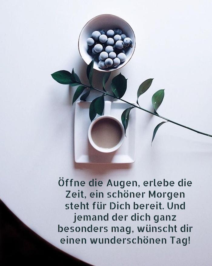 eine pflanze mit grünen blättern, eine weiße tasse mit kaffe und teller mit blaubeeren, guten morgen bilder fürs handy