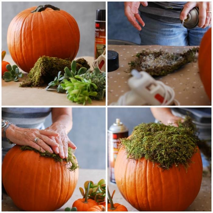 blumentopf sleber machen, kürbis schnitzen ideen, kleine grüne pflanzen, sukkolenten