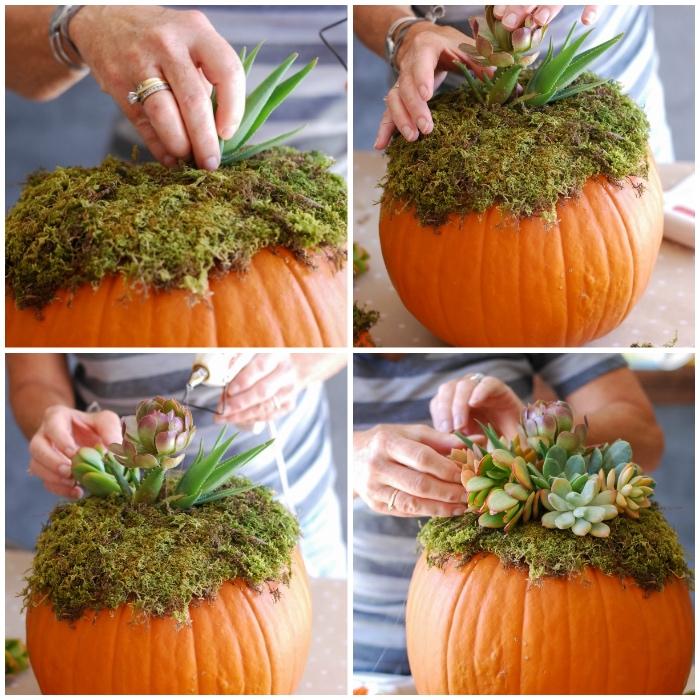 diy blumentopf, kürbis schnitzen ideen, grüne pflanzen ordnen, sukkolenten, vase