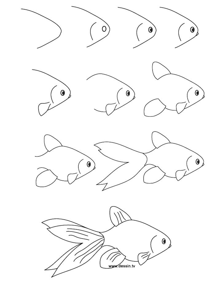 Wie zeichnet man einen Fisch, Anleitung in zehn Schritten für Kinder, leichte Zeichnung