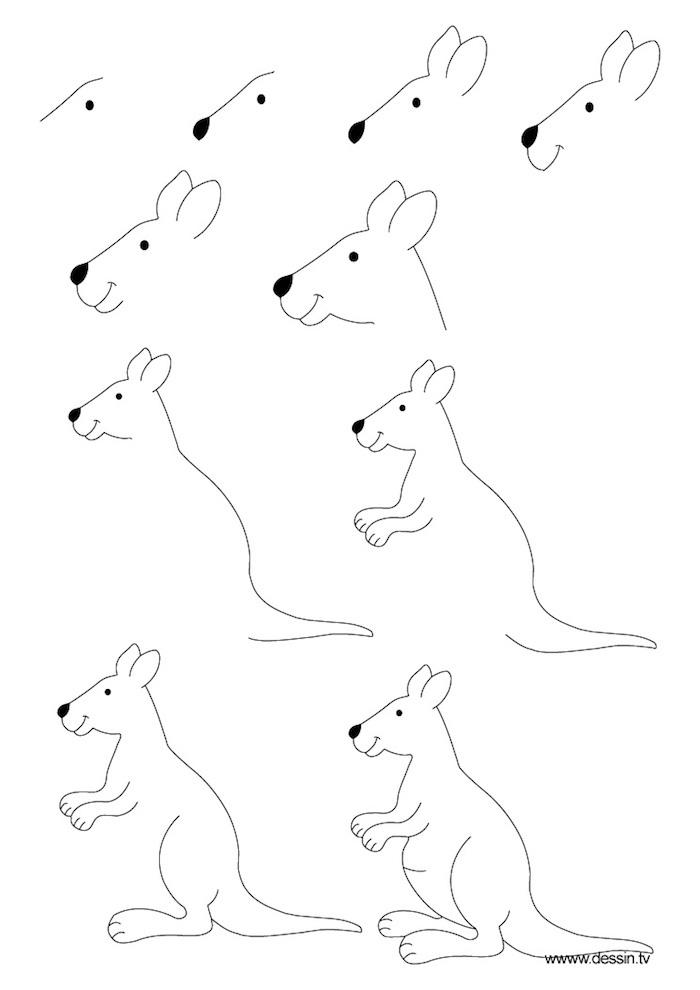Wie zeichnet man ein Känguru, Anleitung in zehn Schritten für Anfänger, leichte Zeichnungen zum Nachmalen