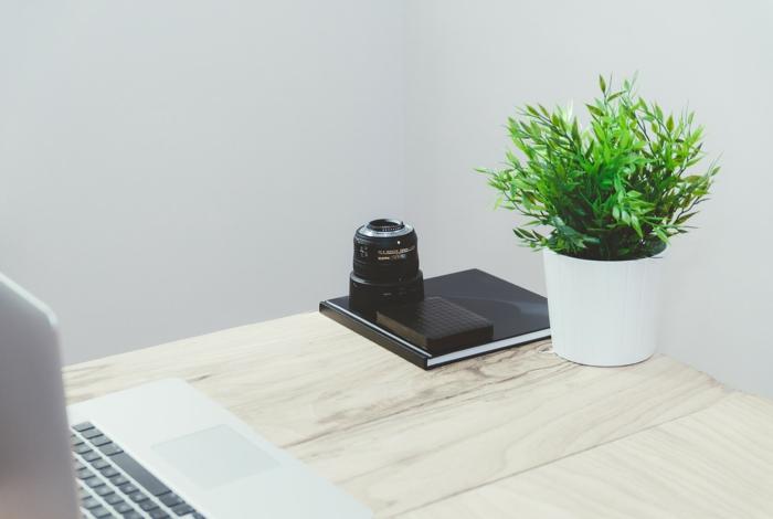 Schreibtisch in hölzerner Farbe, grüne Pflanze