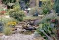 Einen Steingarten anlegen und bepflanzen:  Schritt-für-Schritt-Anleitung