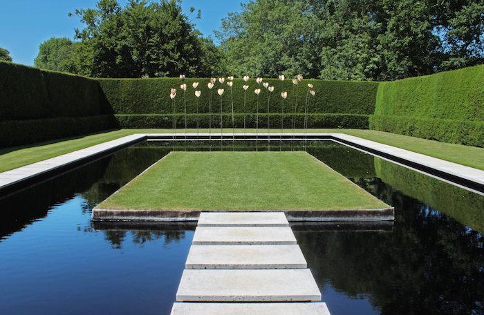 ein gartenweg und ein pool im garten mit einer grünen hecke mit grünen blättern, sichtschutz garten pflanzen