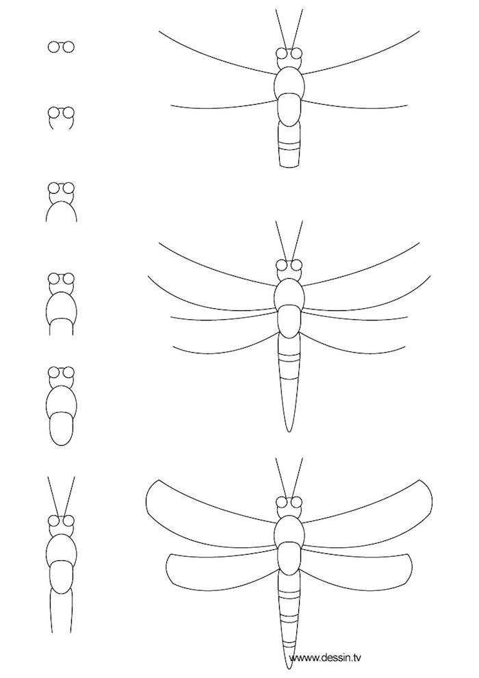 Seepferdchen zeichnen lernen, Anleitung in neun Schritten für Anfänger, leichte Zeichnung
