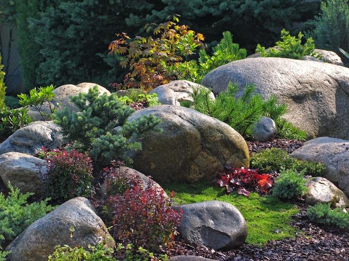 große und kleine graue steine und kiefer und rote blätter, pflanzen für steingarten, eine steingarten deko