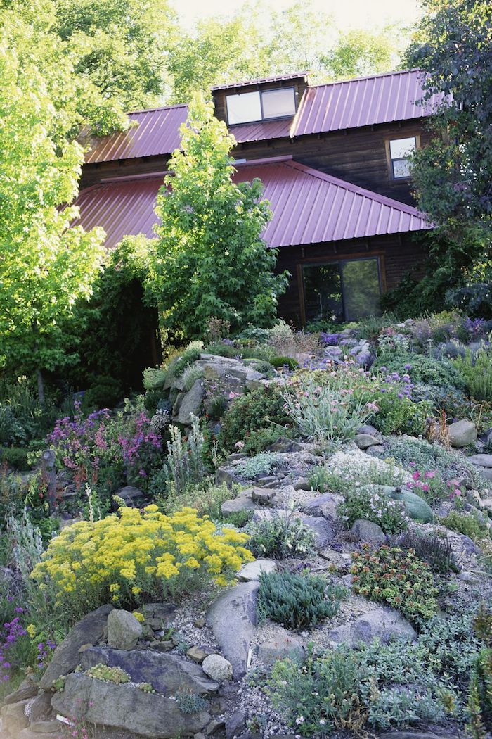 großes braunes haus und kleiner steingarten mit kleinen grauen steinen, violetten und gelben blumen und vielen gr+nen sukkulenten