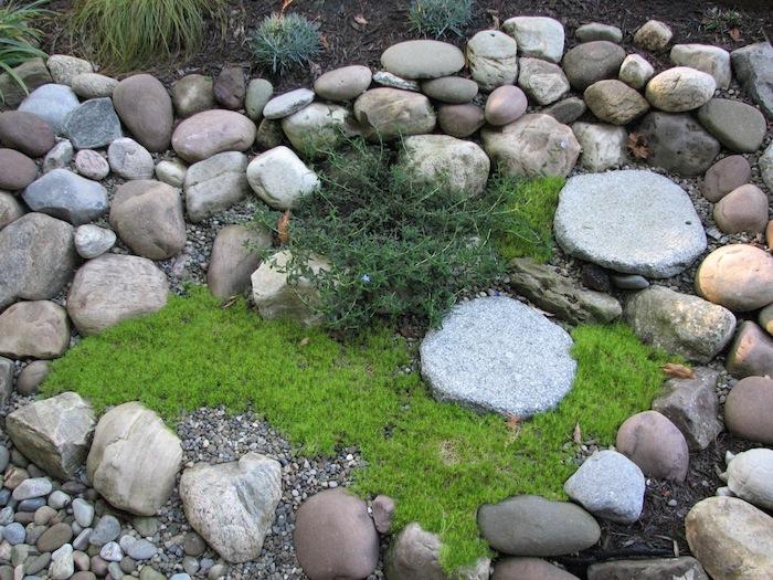 gartengestaltung bilder, kleiner steingarten mit grünen sukkulenten und grauenund weißen natursteinen, steingarten bilder