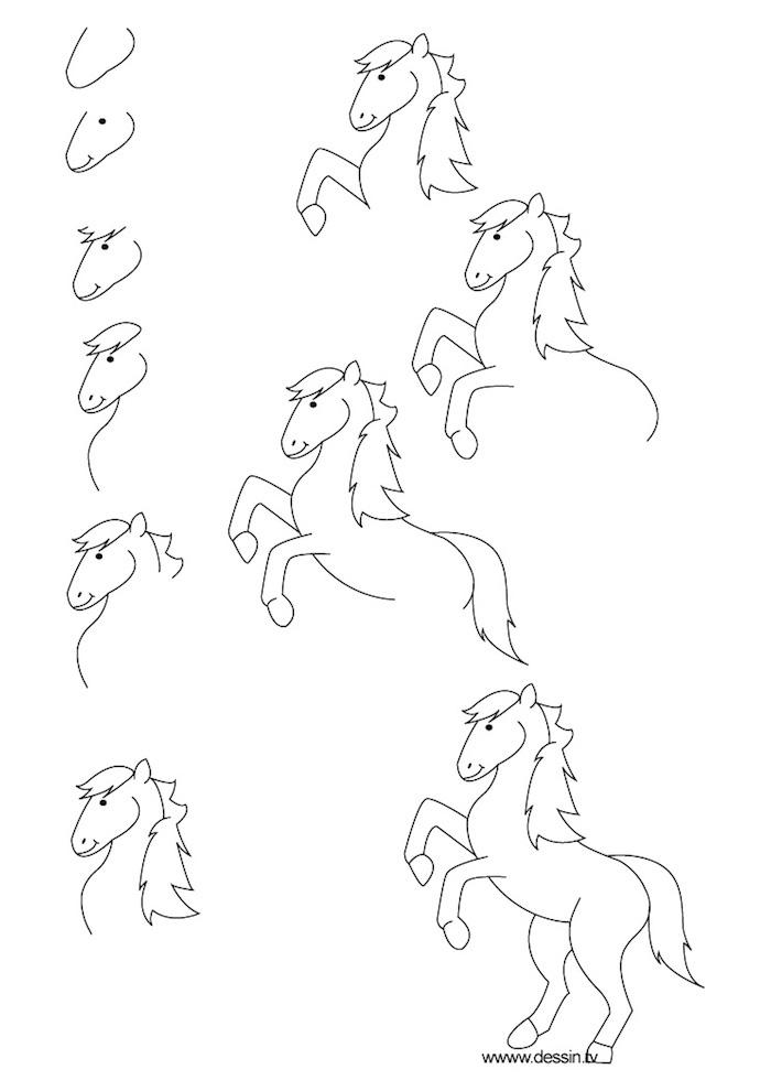 Wie zeichnet man ein Pferd, Anleitung in zehn Schritten für Anfänger, Schritt für Schritt Pferd zeichnen