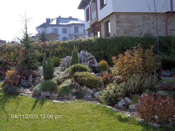 ein zaun sichzschutz aus grünen kletterpflanzen und ein grüner rasen, zwei häuser und ein kleiner steingarten mit grauen steinen und grünen pflanzen und sukkulenten