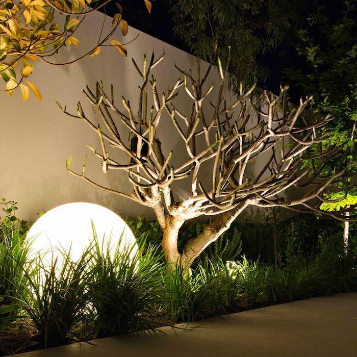 eine weiße lampe und ein kleiner vorgarten mit rasen und bäume mit gelben und grünen blättern, vorgarten modern gestalten ideen