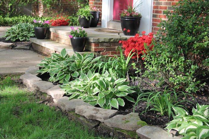 kleiner grüner vorgarten mit grünen pflanzen und grünen blättern und rote blumen, eine weiße tür und grüner rasen