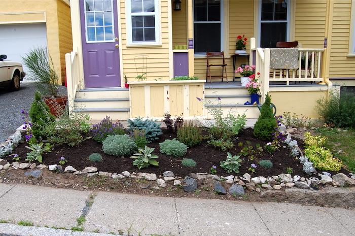 gelbes haus aus holz und mit einer terrasse mit treppen, kleiner vorgarten mit grünen kakteen und vorgarten pflanzen und kleinen grauen steinen, vorgarten mit steinen