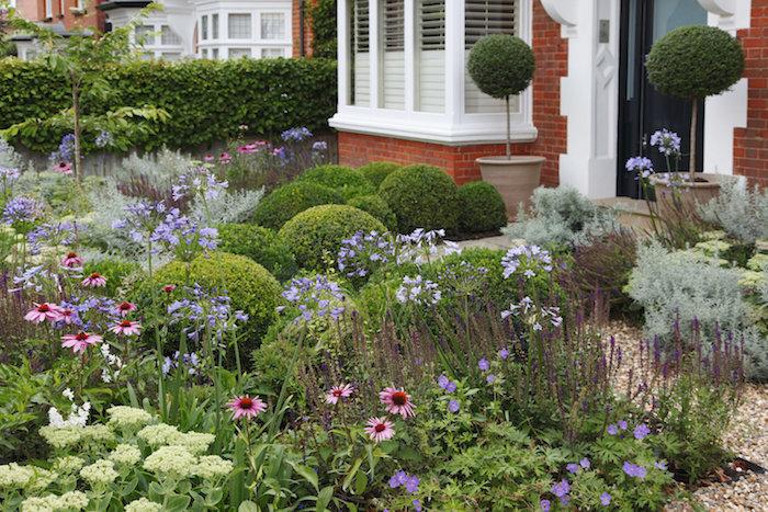 kleiner vorgarten mit vielen pinken und violetten blumen und grünen pflanzen und pflanzkübel mit kleinen bäumen für vorgarten