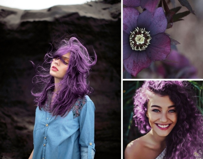 haarfarbe lila ähnlich wie die schönen natürlichen farben der pflaumen und einigen blumen, zwei frauen mit lockigen haaren