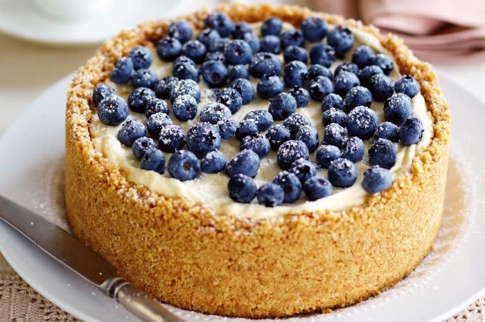 philadelphia kuchen mit blaubeeren, torte mit obst, boden aus keksen, nachtisch ideen
