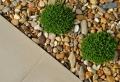 Vorgarten modern gestalten – tolle Gartentipps!