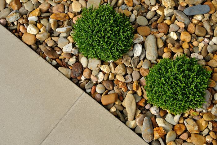 kleine beige und graue steine und zwei grüne pflanzen mit grünen blättern und ein boden aus fliesen, vorgarten gestalten ideen