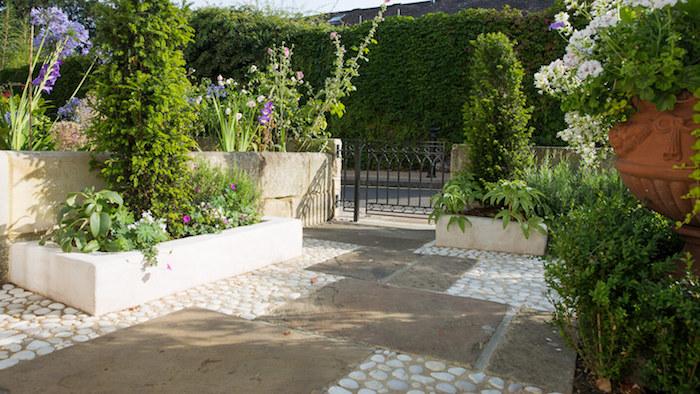 kleiner zaun und hochbeete mit grünen vorgarten pflanzen und violetten und weißen blumen, blumentöpfe mit weißen blumen und sichtschutz aus grünen kletterpflanzen