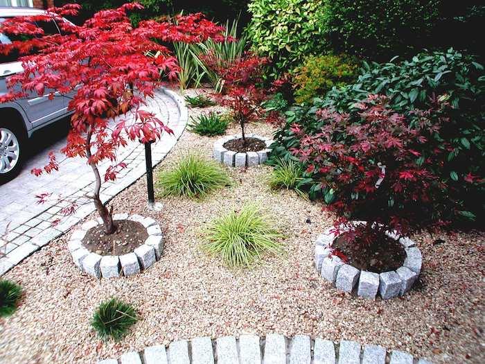 ein kleiner vorgarten mit kleinen bäumen mit roten blättern und kleine grüne pflanzen und ein graues auto