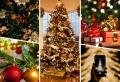 Weihnachtsbaum kaufen: Hilfreiche Tipps, wie Sie den perfekten Baum finden!
