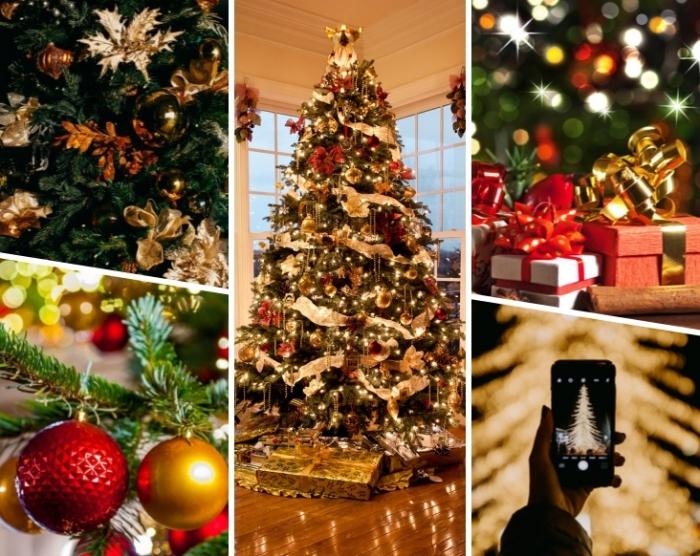 Tannenbaum Draußen Schmücken.Weihnachtsbaum Kaufen Hilfreiche Tipps Wie Sie Den Perfekten