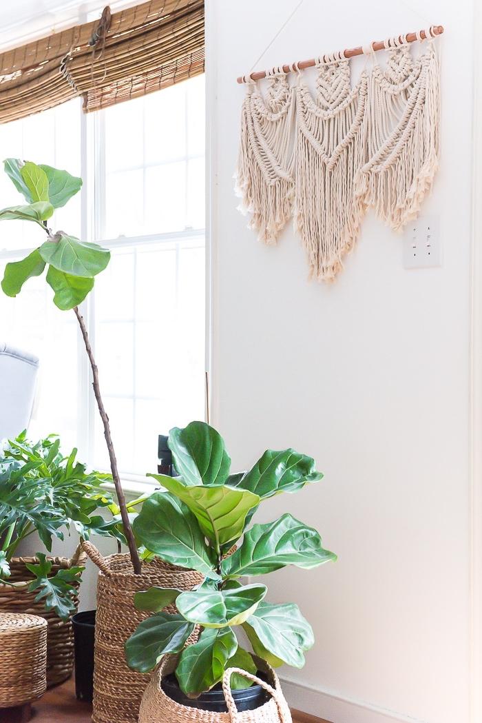 makramee anleitung kostenlos ideen und insp für jeden, grüne pflanzen im vordergrund deko