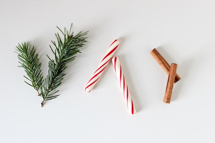 Tannenzweige, Zuckerstangen und Zimt in Einmachglas füllen, kleines Geschenk zu Weihnachten