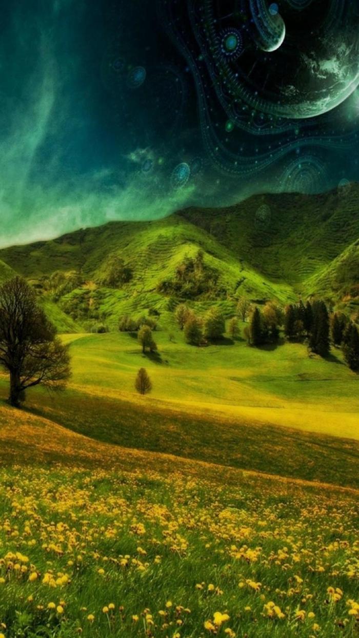 ein fantastisches Bild von Gebirge und Wiese mit gelber Blumen, ein UFO in dem Himmel, Bildschirmhintergrund