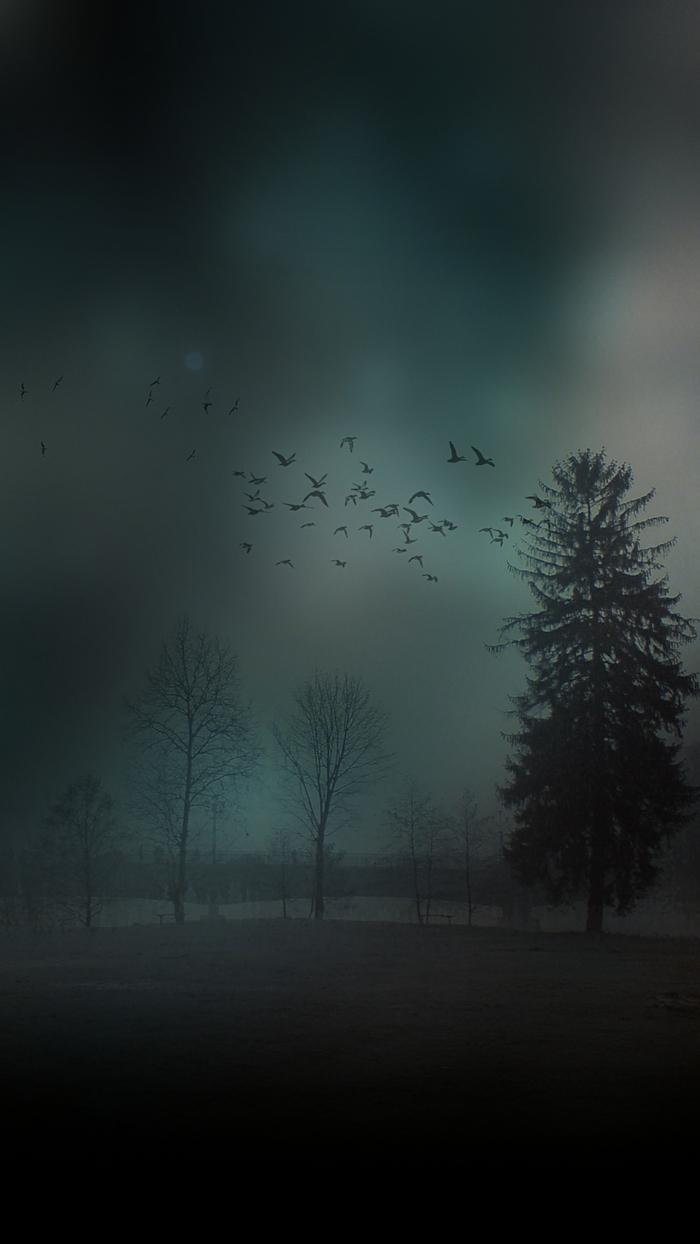 schwarzer Hintergrund, ein gruseliges Bild, mit einer Vögelflocke, Bäume ohne Blätter, Bildschirmhintergrund