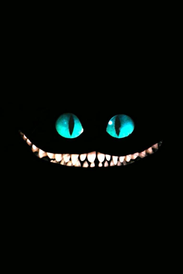 iphone wallpaper, schwarzes bild, katze hinten, augen blau, große zähne, katzenaugen