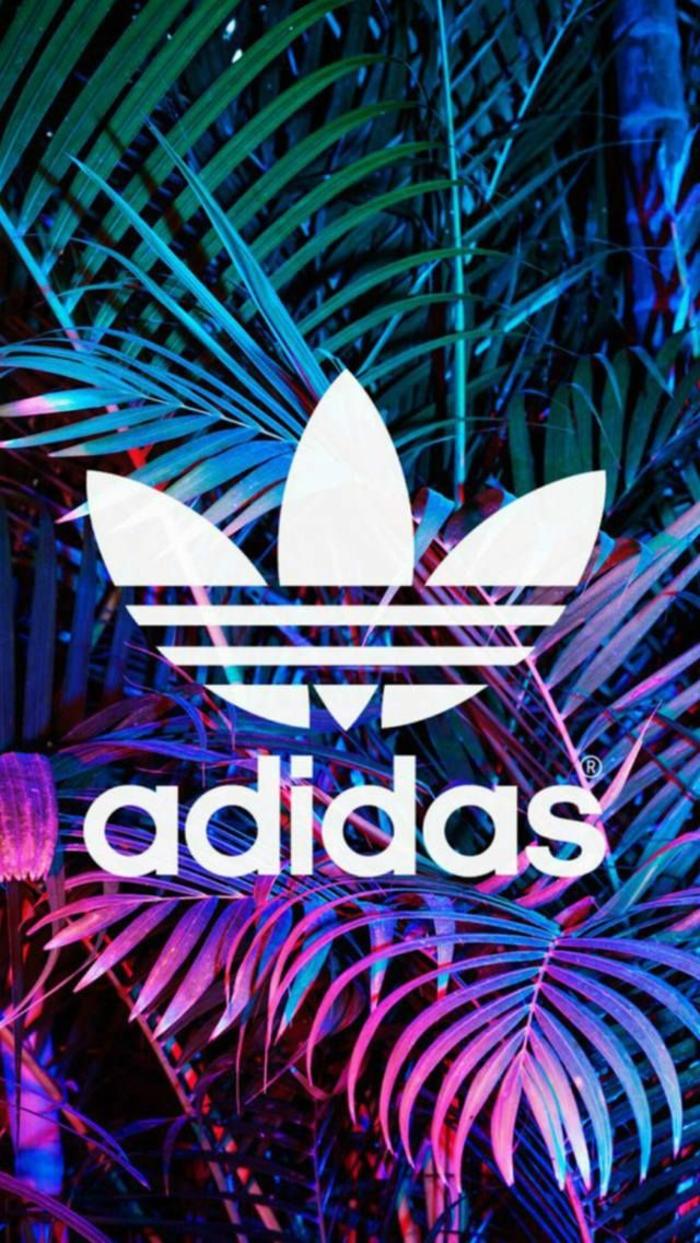 hintergründe kostenlos, adidas logo, bild weiß auf buntem hintergrund, rosa, lila grün