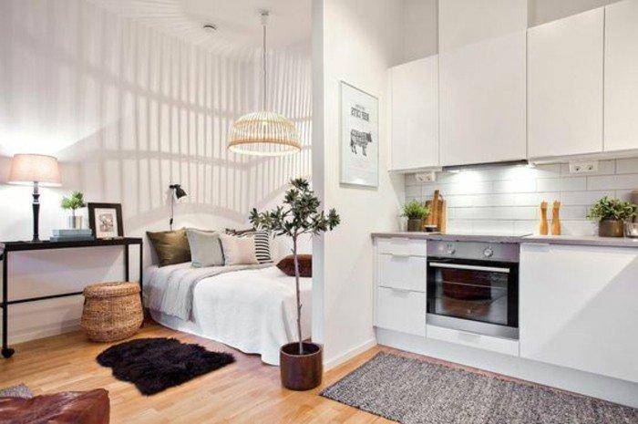 einzimmerwohnung einrichten, rechts steht eine küchenzeile, es gibt eine dünne wand als raumteiler und blumentopf mit einem kleinen baum, links liegt das große bequeme bett, schwarzer fellteppich klein und flauschig