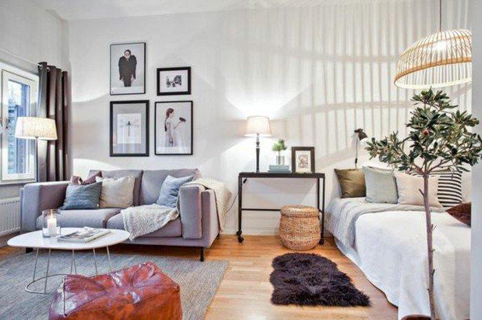 stilvolle einzimmerwohnung einrichten, vier wandbilder nebeneinander, doppelsofa und doppelbett, zimmerpflanzen als deko, kleiner runder kaffeetisch