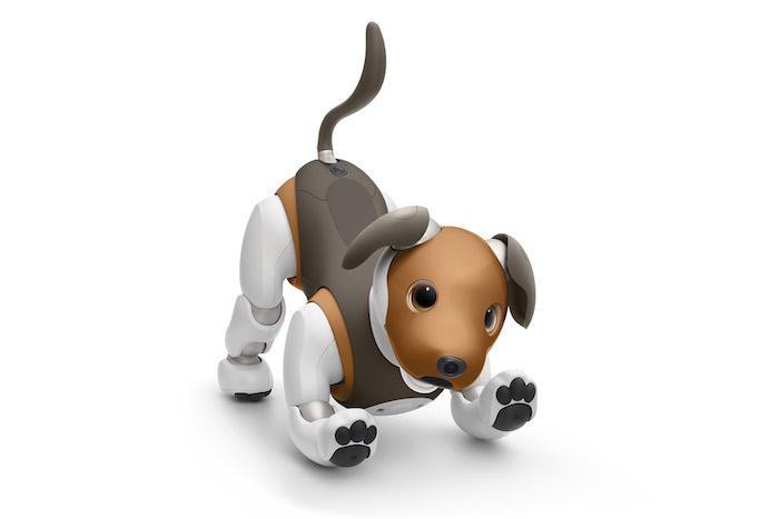 ein kleiner brauner robo-hund aibo von sony, niedlicher brauner hund mit schwarzen augen, einem braunen kurzen schwanz und braunen ohren