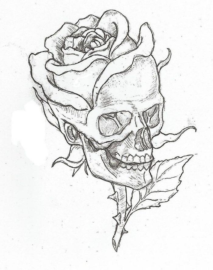 bilder zum nachzeichnen, schädel in kobmiantion mit rose, totenkopf zeichnen
