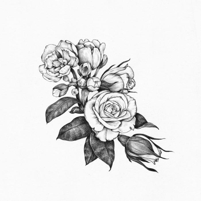 bilder zum zeichnen, rosen zeichnung in schwarz und grau, blumen und blätter